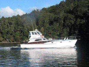 Cruise lake Te Anau
