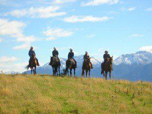 Westray horse riding